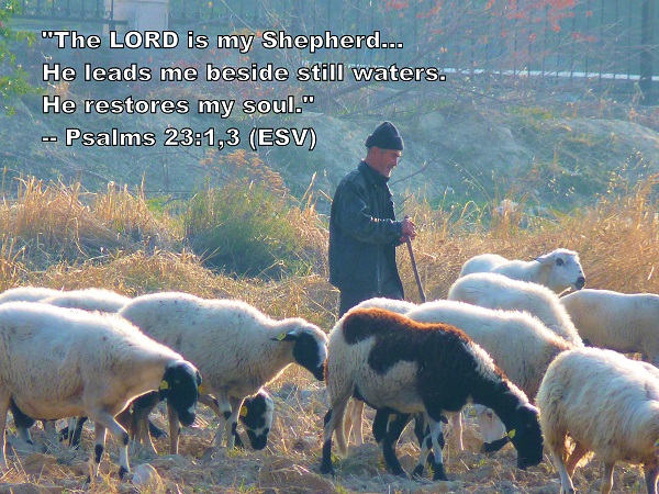 the_Lord_is_my_shepherd_600